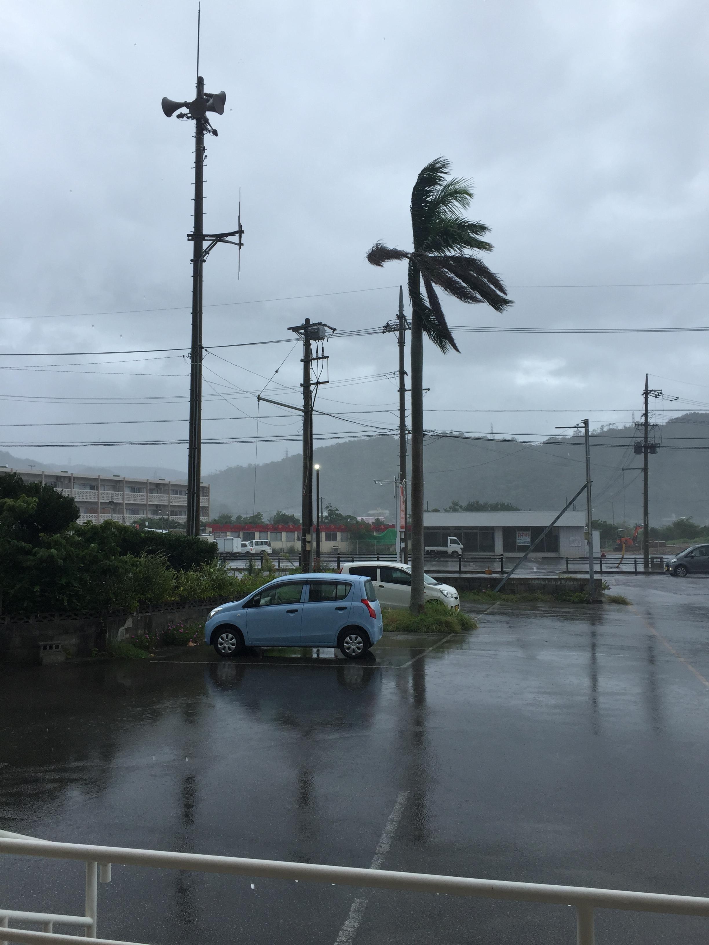 名護市に台風直撃