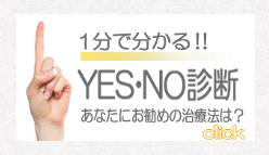 yesno